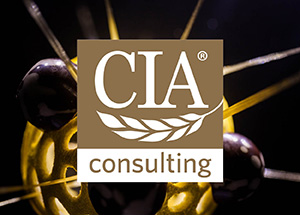 CIA Consulting Homepage Icon
