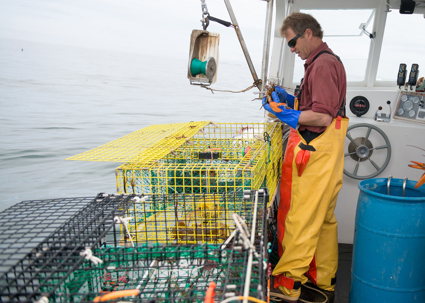 Sustainability for Lobster fishing in maine